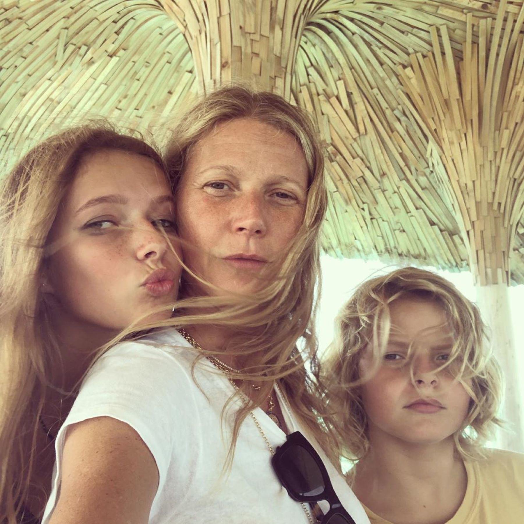 "Proof that Apple, Gwyneth Paltrow's daughter, is her ""minimie"""