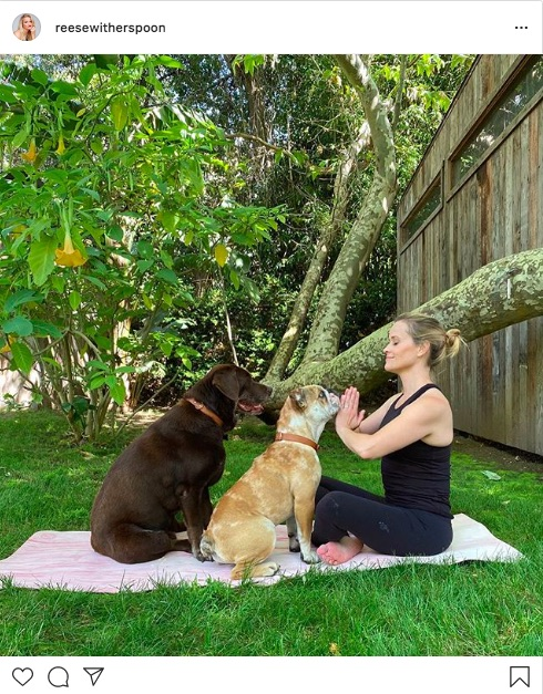 Reese Witherspoon do yoga with the dog
