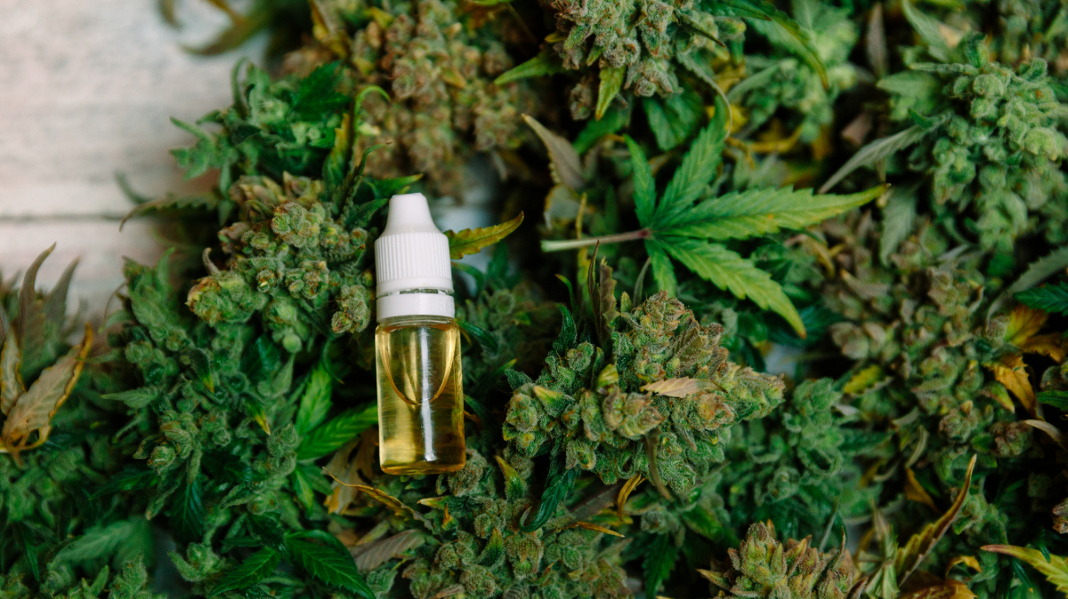 Rules and regulations for CBD oil in France